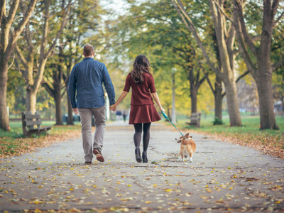 chicago lifestyle photographer, pet photographer, national dog day, pet photography, chicago photographer