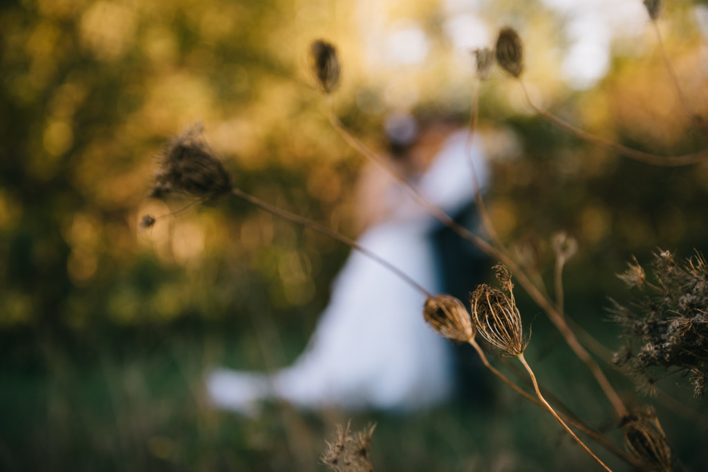 chicago wedding photographer, farm wedding, country wedding, north judson indiana, indiana wedding photographer, iron and honey