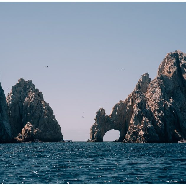 Whale Watching in Cabo San Lucas, cabo adventures, sea of cortez, baja california, mexico, cabo san lucas, whale watching, tour, sea lion, pelican, el arco, the arch, pacific ocean, gulf of california, travel photography, travel photographer, wanderlust,