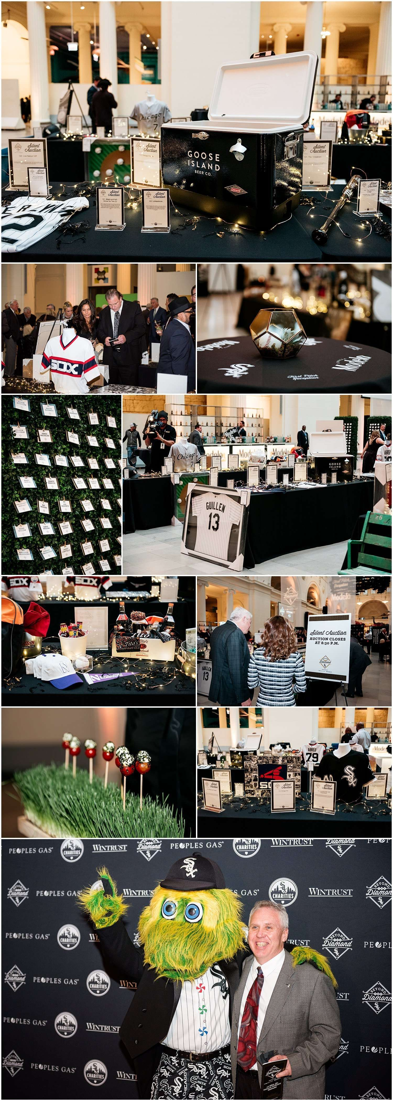 white sox, baseball, mlb, charity, event, photographer, photography, field museum, charities, beyond the diamond, chicago